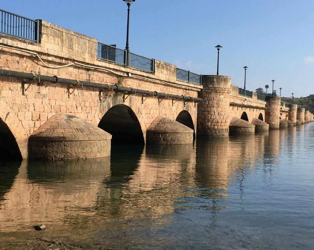 Puente de la Maza_72
